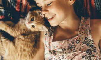 Kitten with kid