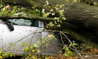 Storm Damage: 5 Things To Do | Is Your Car Covered? | CANSTAR