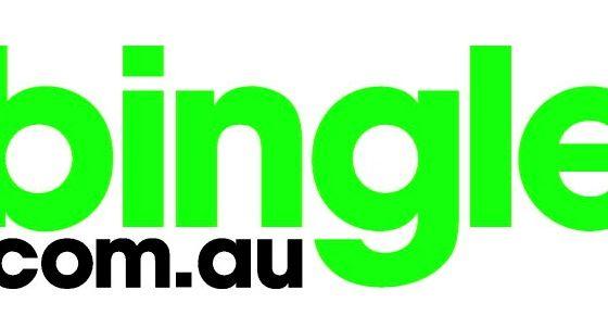 Bingle Car Insurance Logo