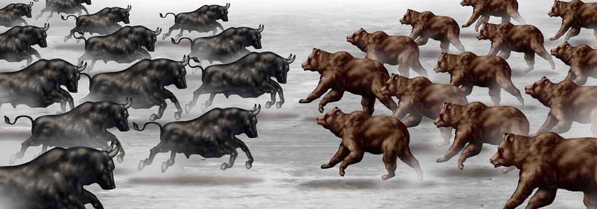 Bear Versus Bull Markets