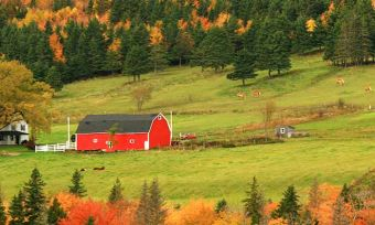 Pros and Cons Of Owning Acreage