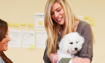 Pets can be good for business!