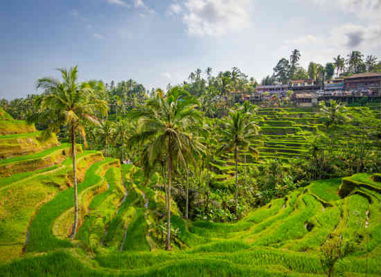 Where to avoid in Bali