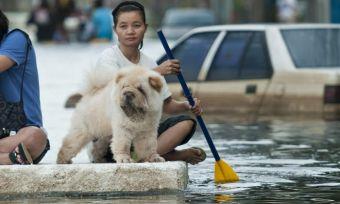 2011 floods paddling down the street
