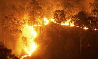 Bushfire checklist