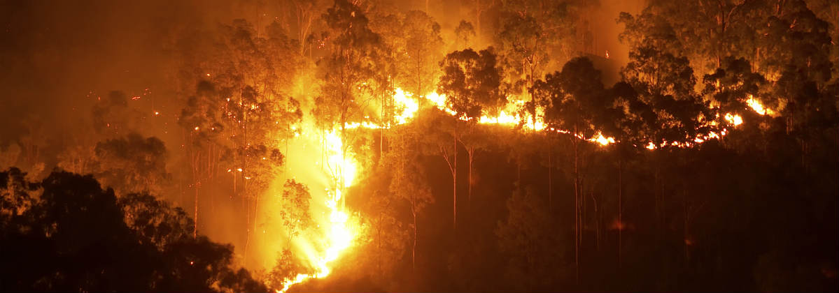 Low Interest Loans >> Bushfire Checklist: Bushfire Prevention & Bushfire Survival Plan
