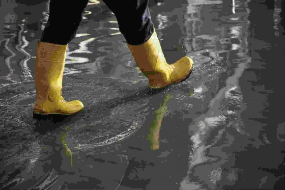 Gumboots in the water