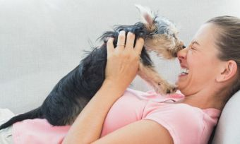 save-money-pet-house-sitting