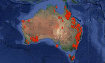donate-bushfire